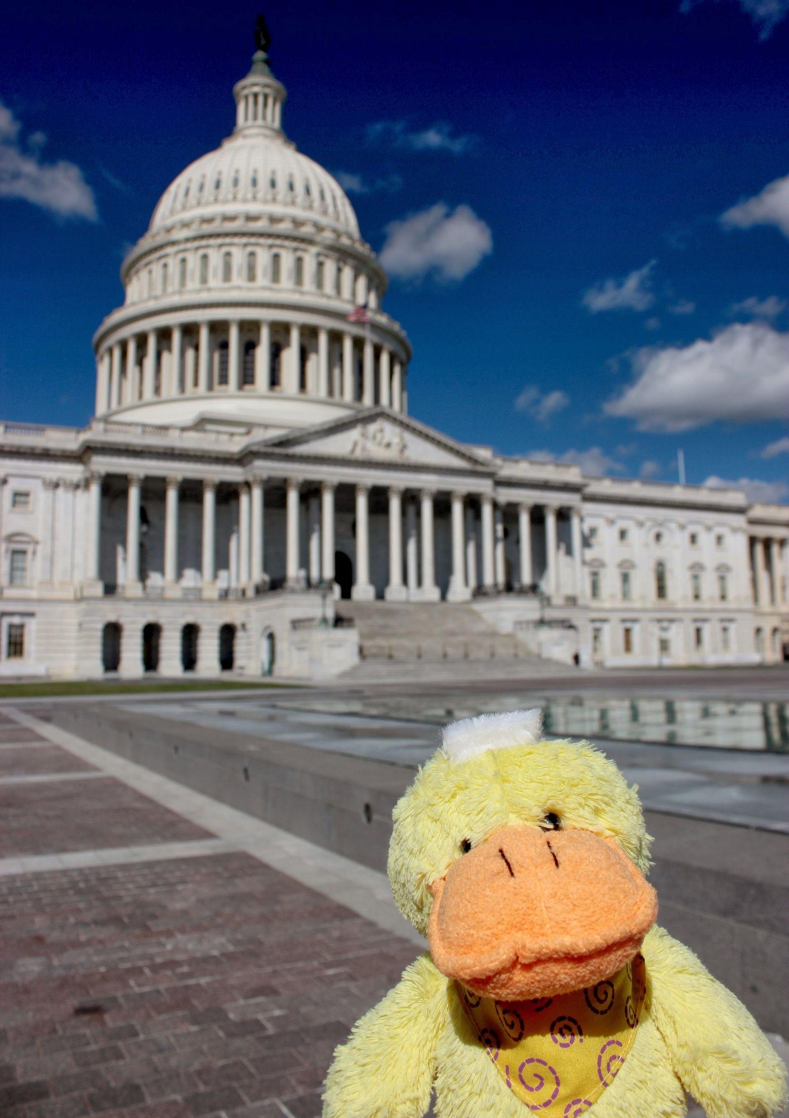 Iniciando su carrera como senador...