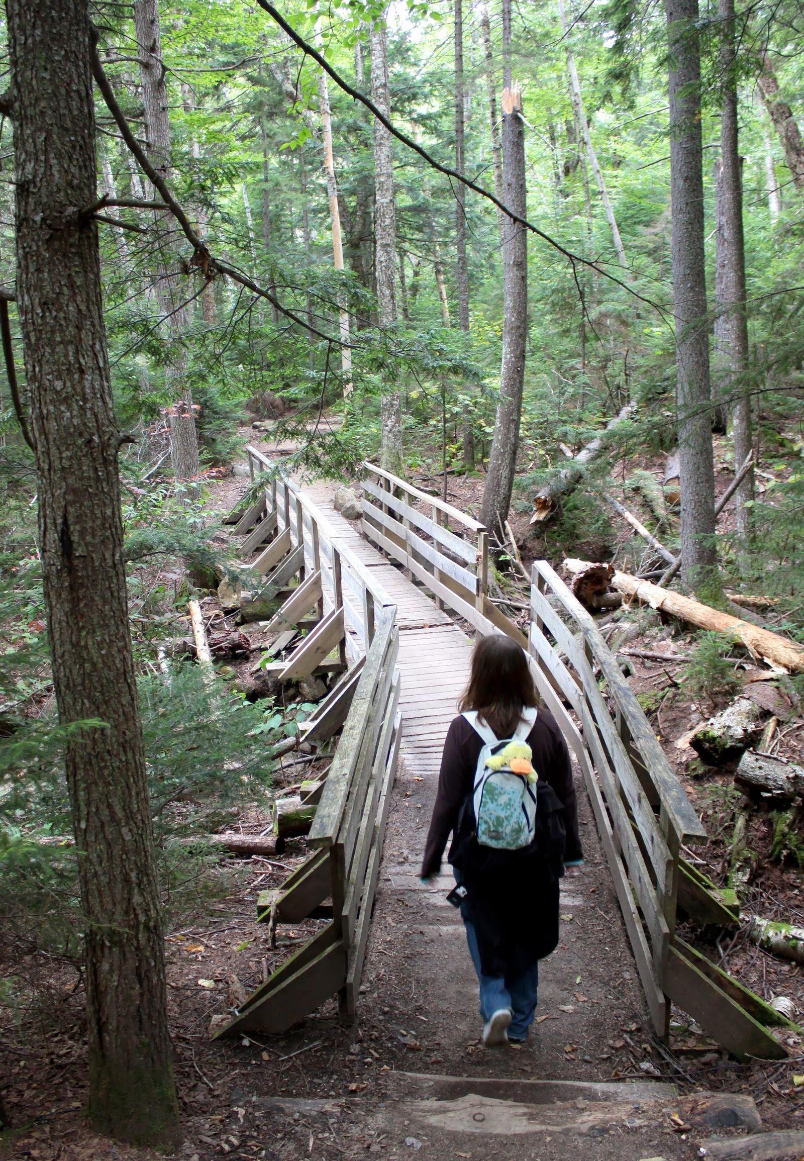 ... clásicos puentes de madera...