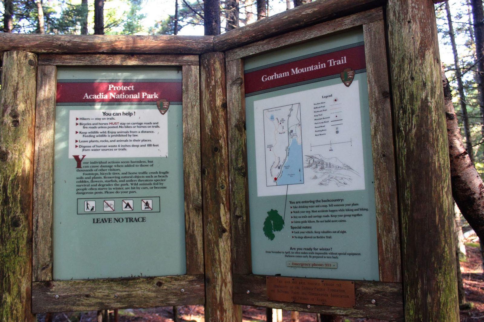 Gorham Mountain Trail, comencemos