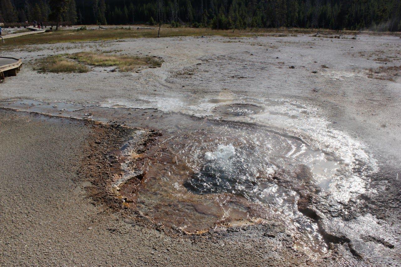 Géyseres atacando por todas partes en el Black Sand Basin