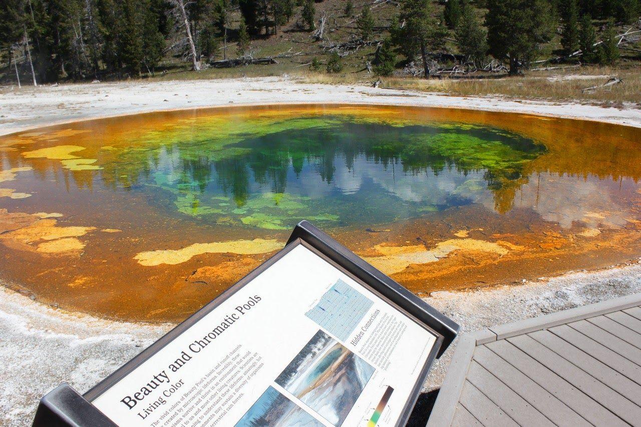 Beauty Pool, conectada a la Chromatic bajo el suelo