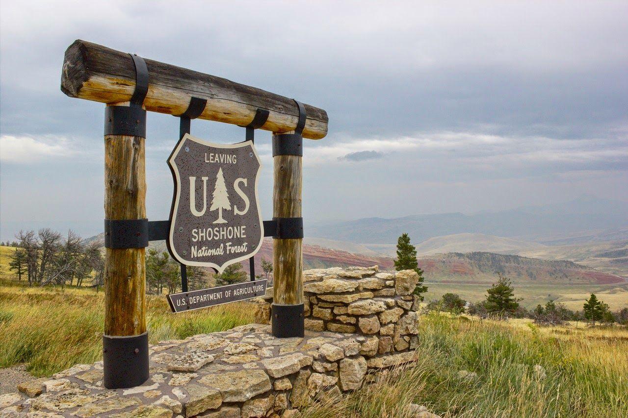El Shoshone National Forest nos ha acompañado toda la jornada
