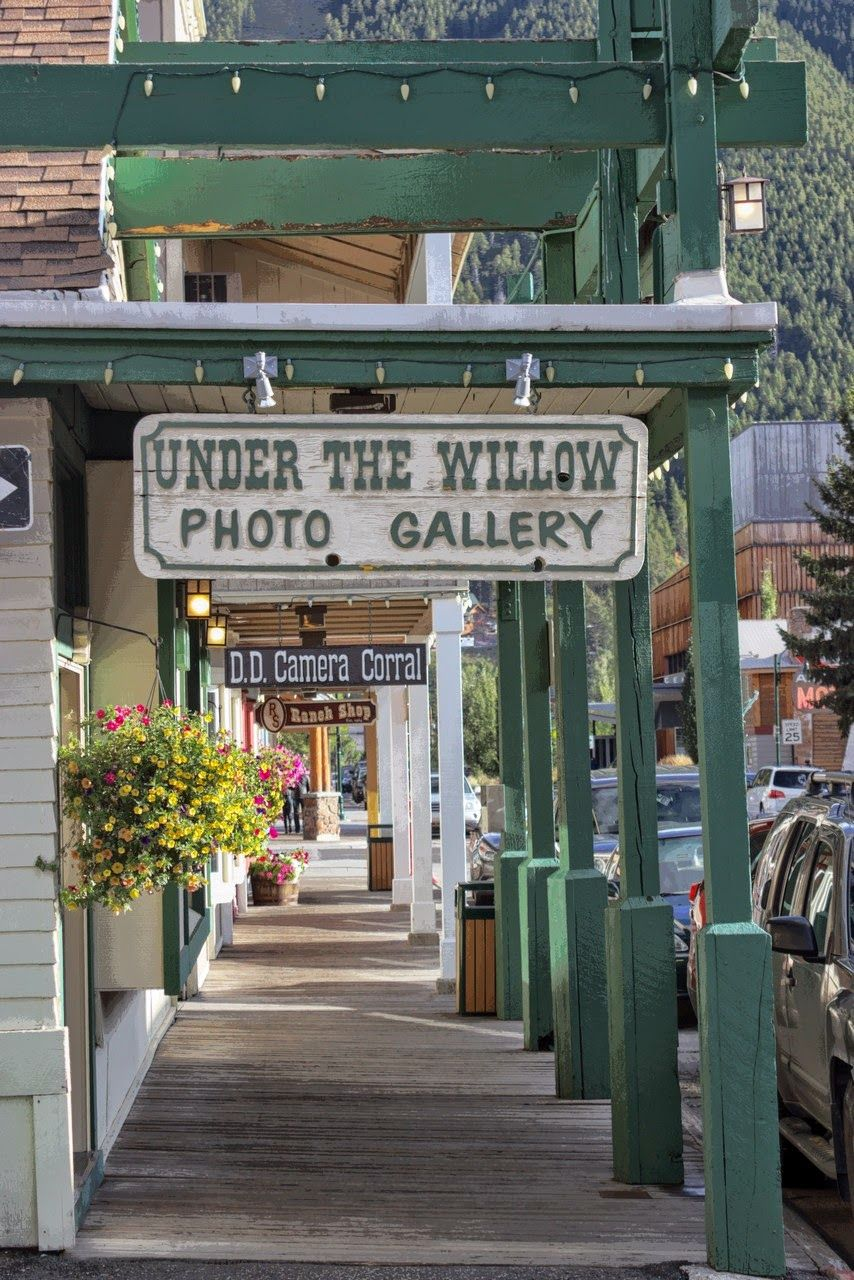 Mucha tienda y exposición fotográfica
