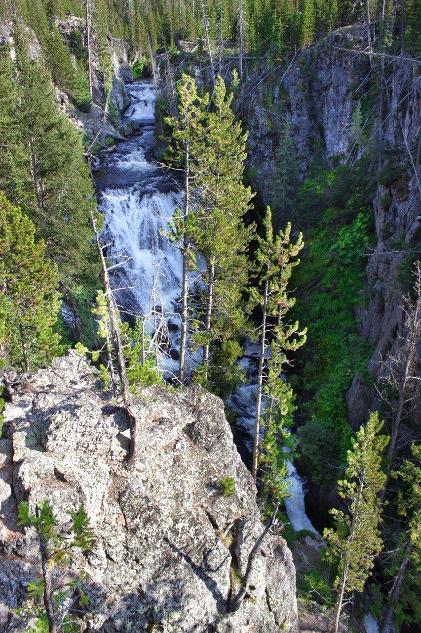 Kepler Cascades, o lo que los árboles dejan ver de ellas