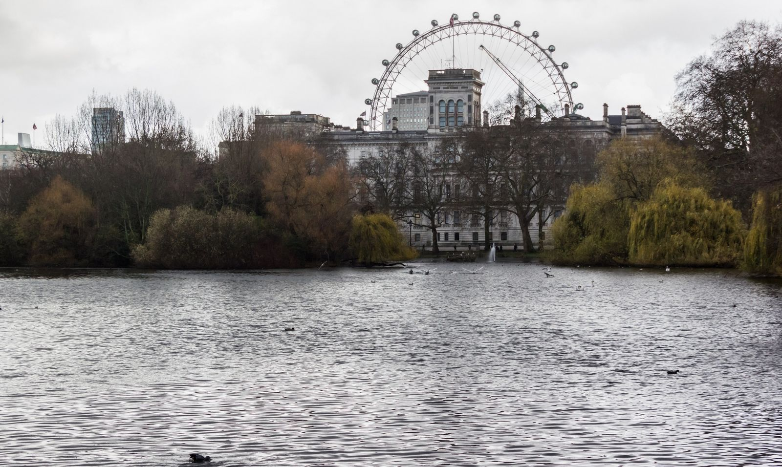 El London Eye desde el lago de St. James's Park