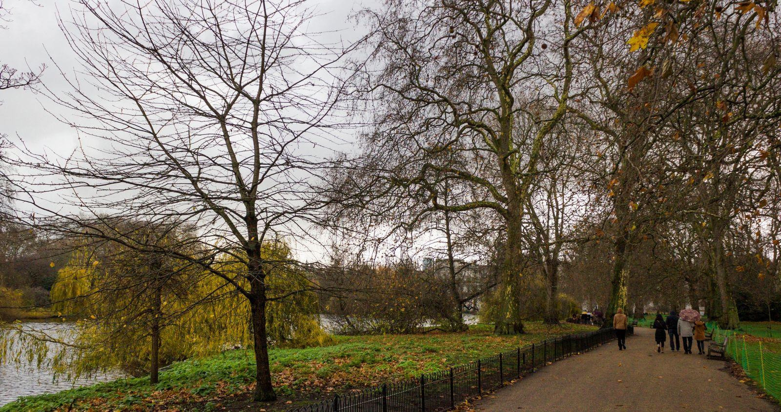 Un pequeño respiro verde entre el cemento de Londres