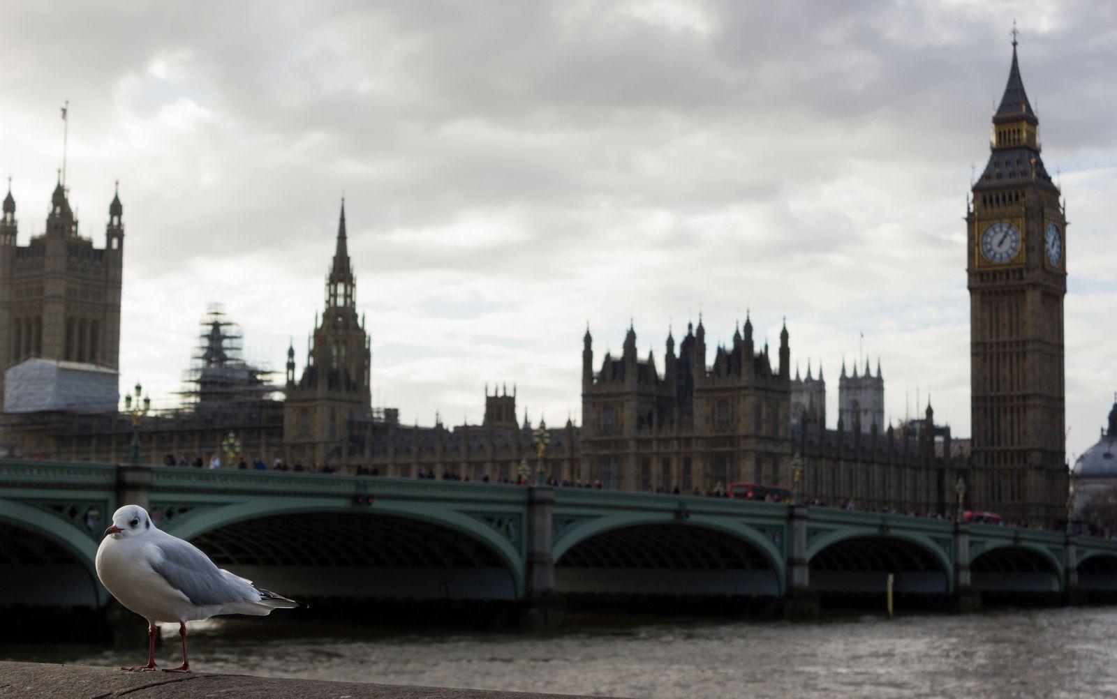 El Parlamento, ahora desde el otro lado