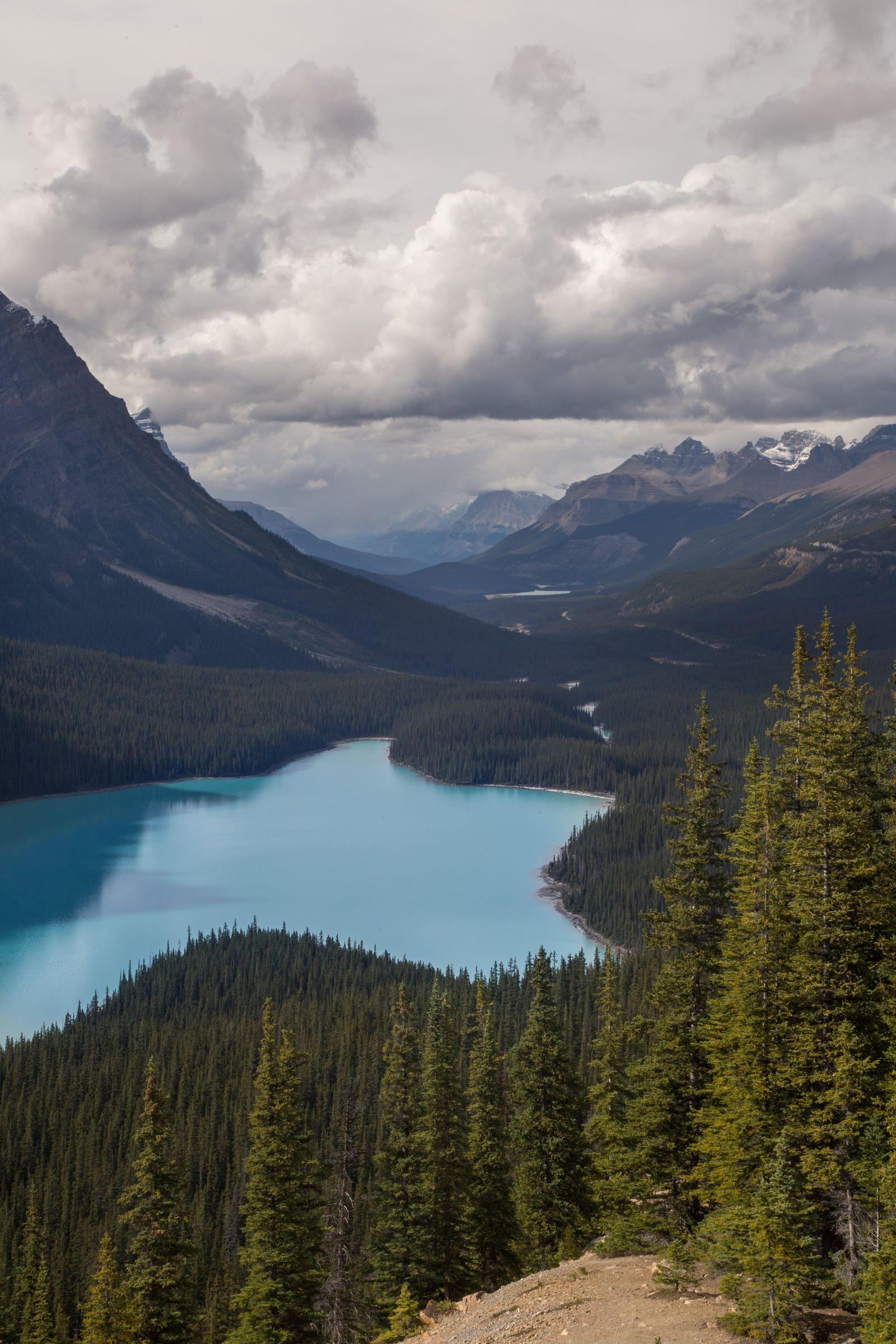 Un vistazo al entorno más allá de lago