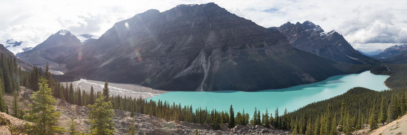 Peyto Lake y el reencuentro con el turquesa imposible