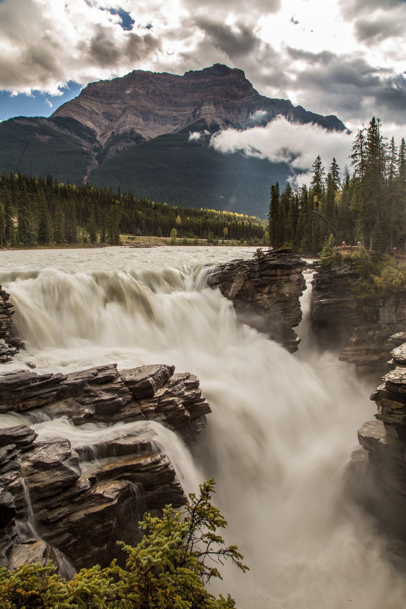 Athabasca Falls (I)