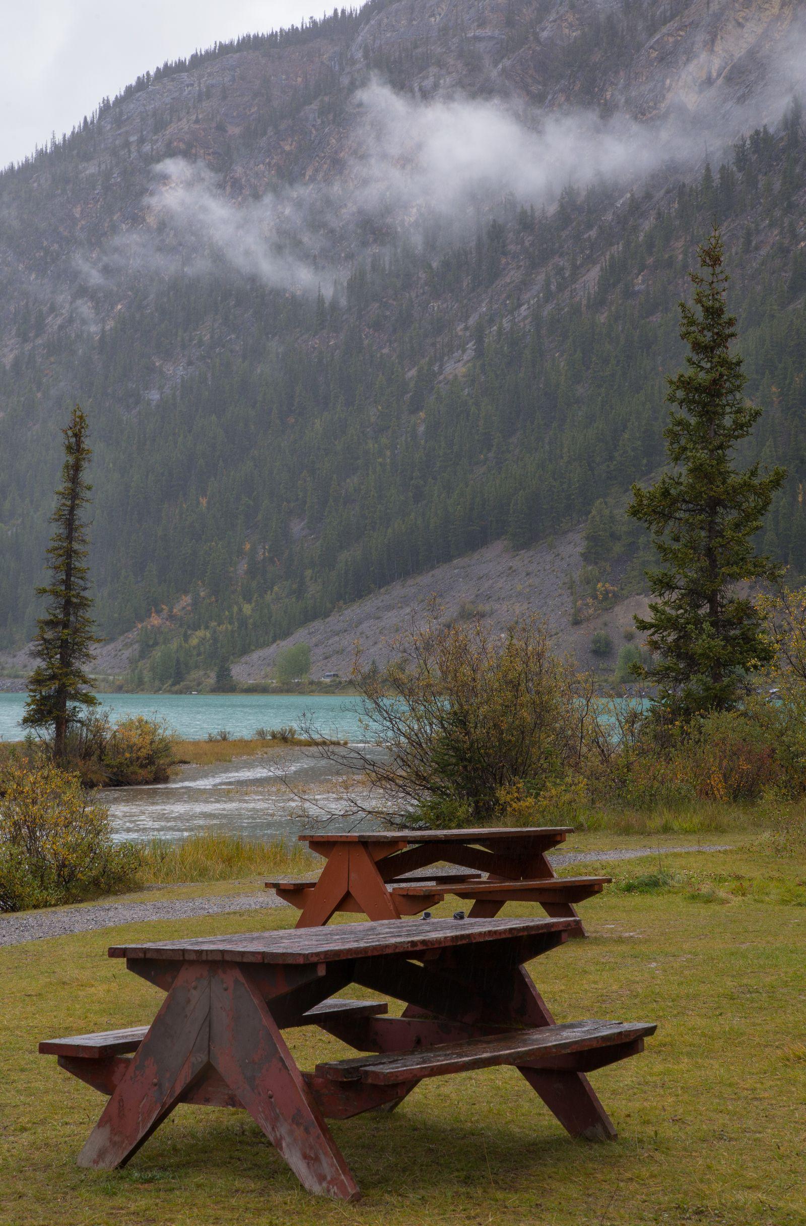 Una zona de picnic junto al lago