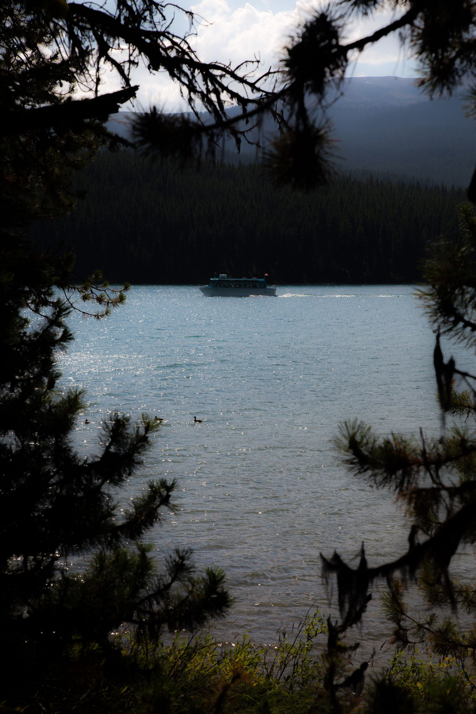 Uno de los numerosos ferries a Spirit Island