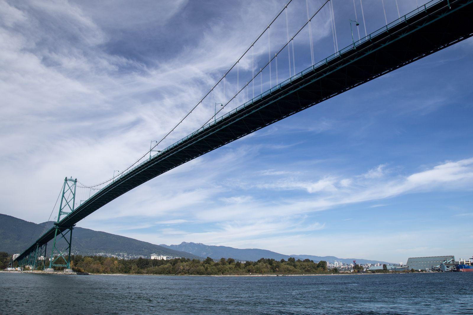 El puente, ahora desde abajo