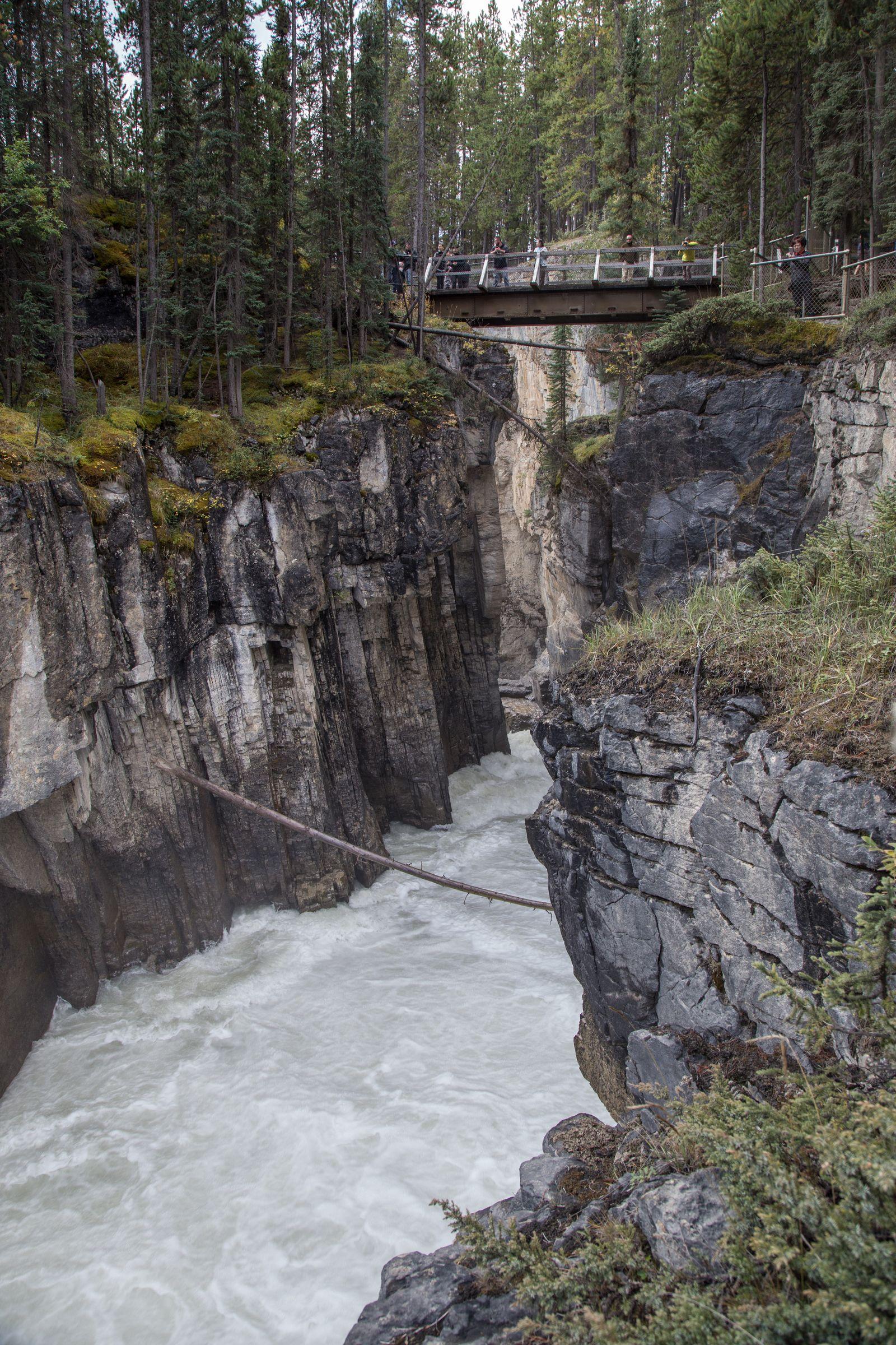Más puentes en Sunwapta Falls