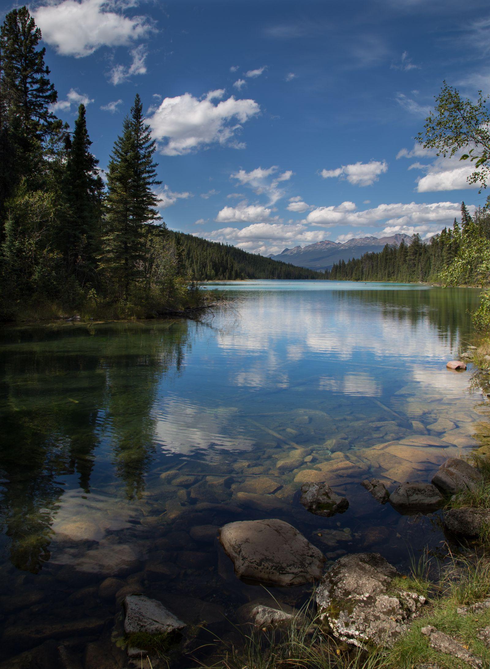 Un vistazo furtivo al quinto lago