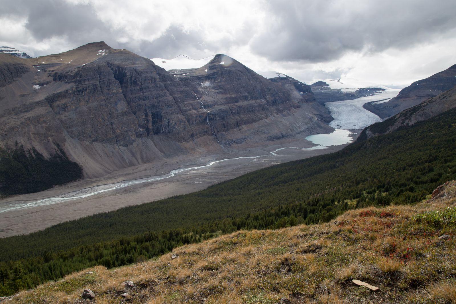 La lengua glaciar de Saskatchewan