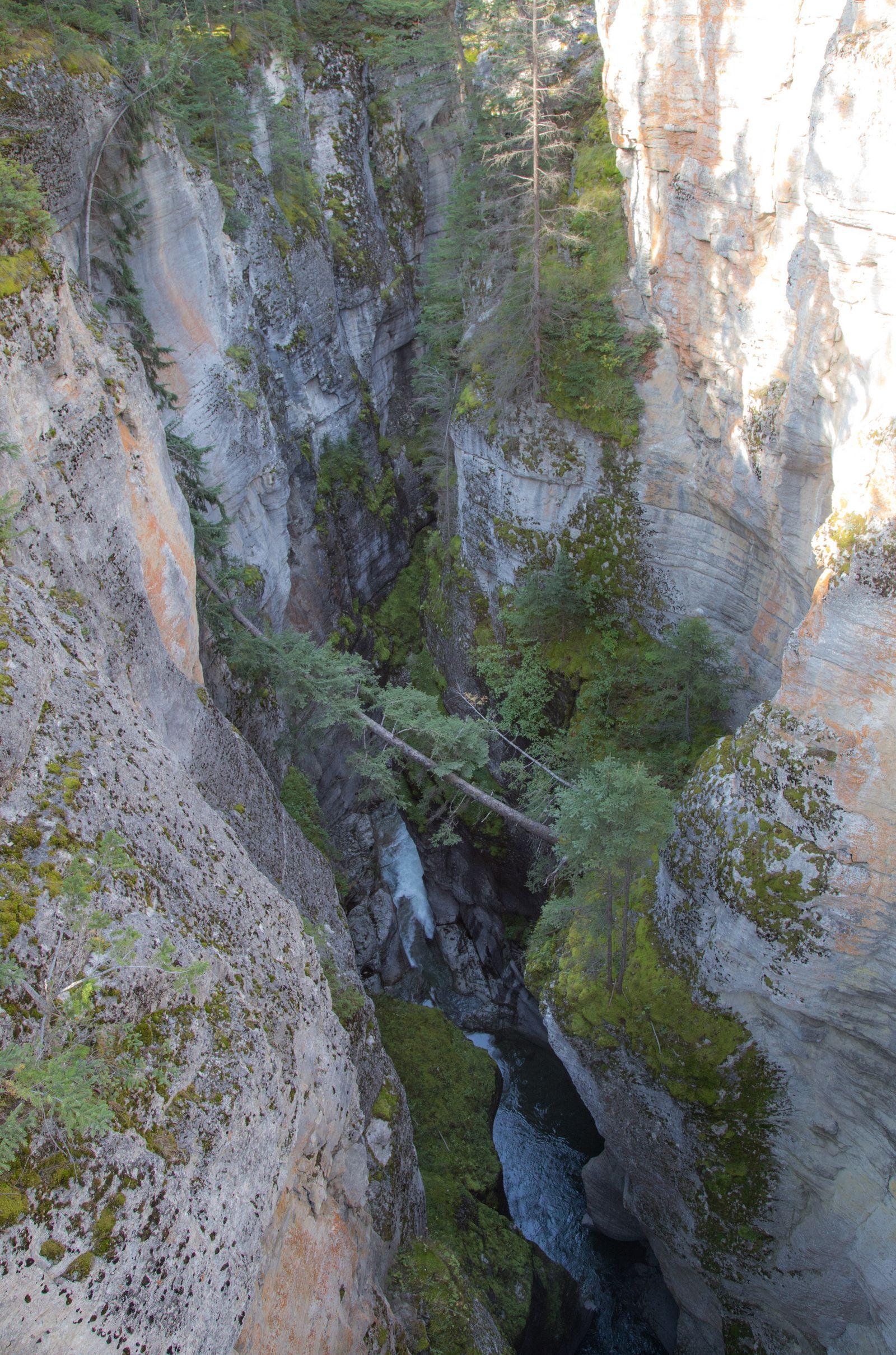 Las profundidades de Maligne Canyon