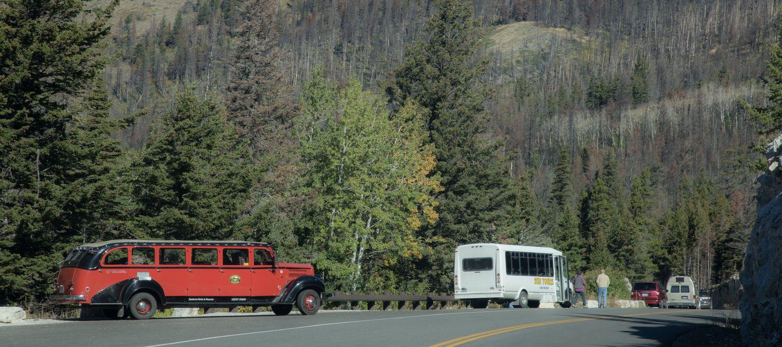 Uno de los autobuses lanzadera del parque