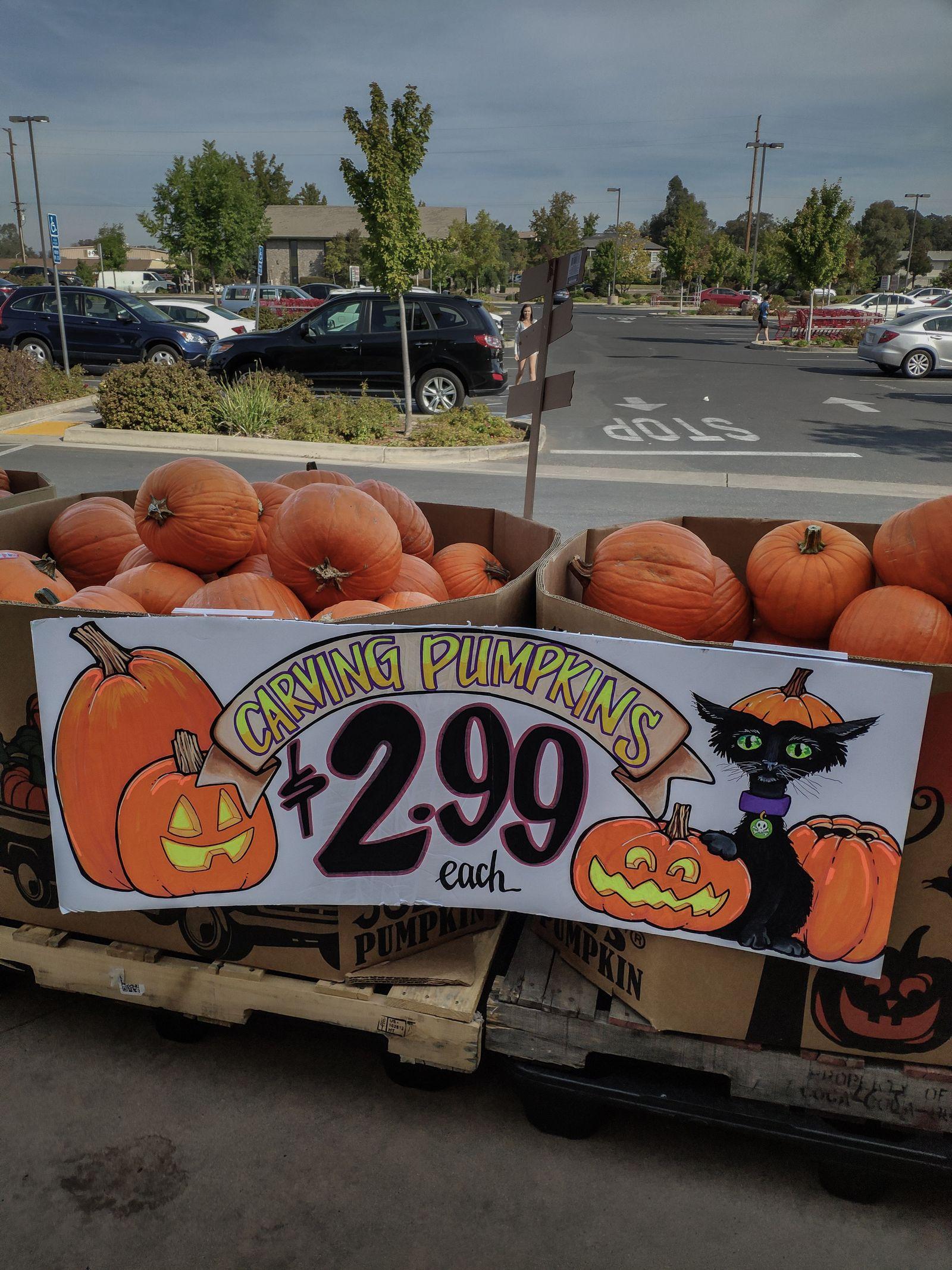 Halloween en Trader Joe's (II)