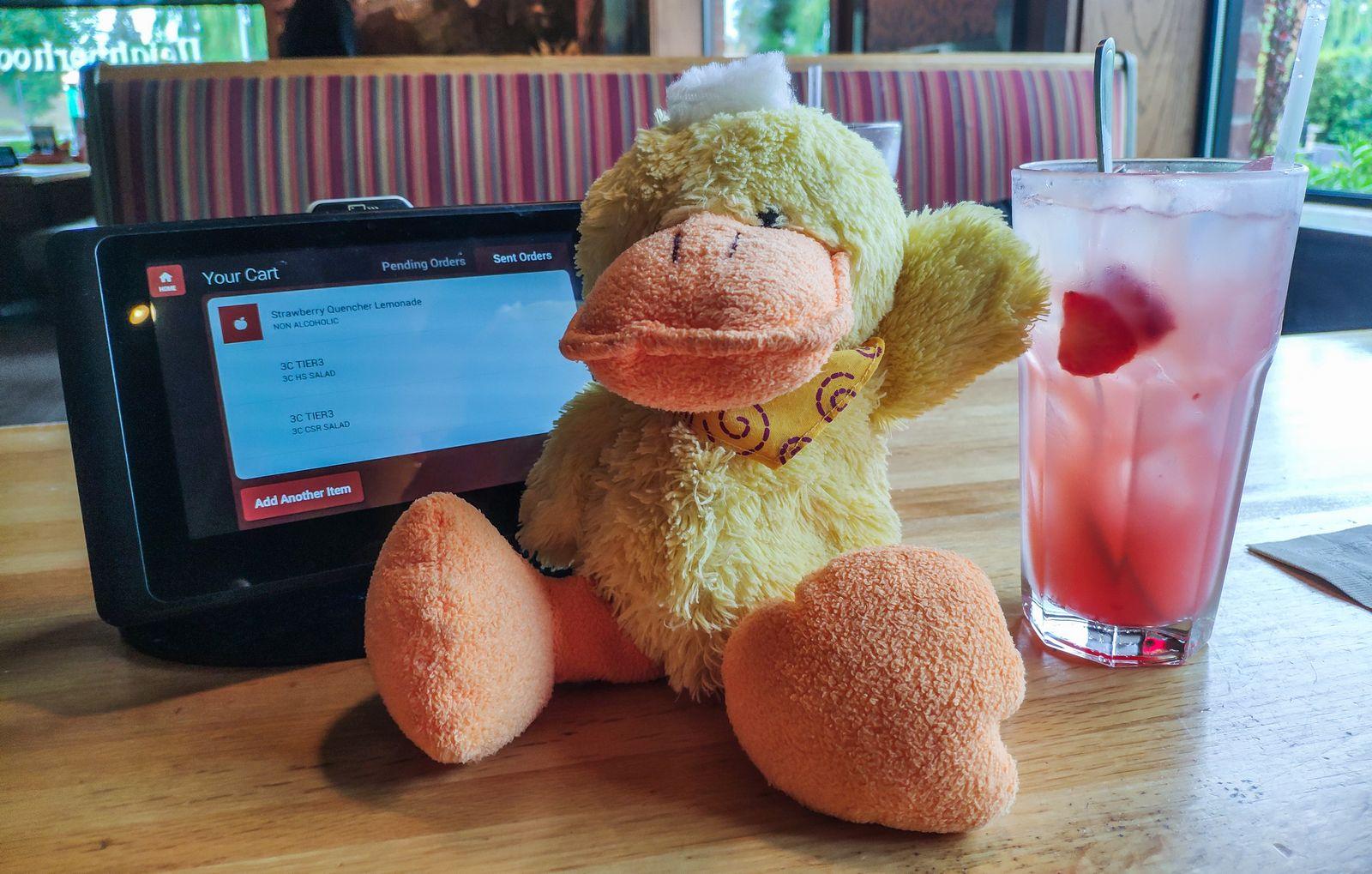 Mi nombre es Pato y seré vuestro camarero de hoy