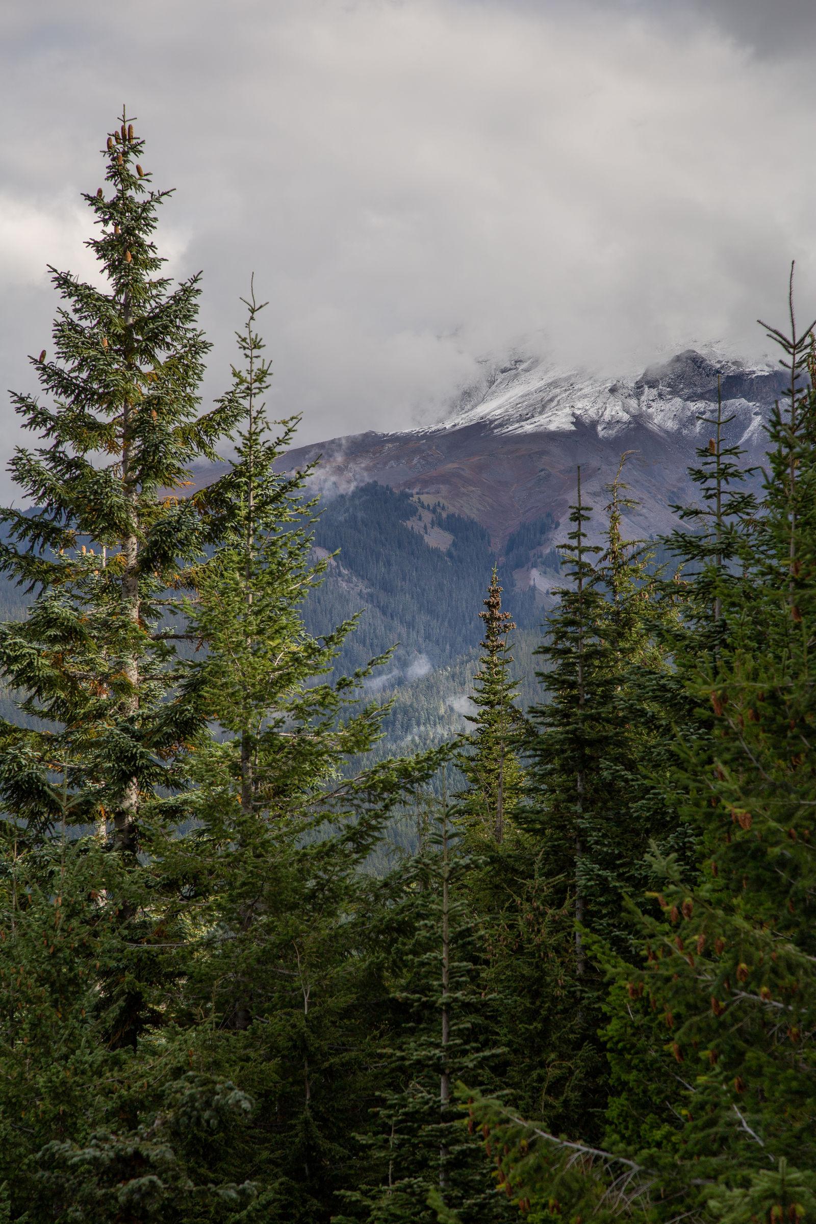 Eso del fondo es Mount Hood, dicen