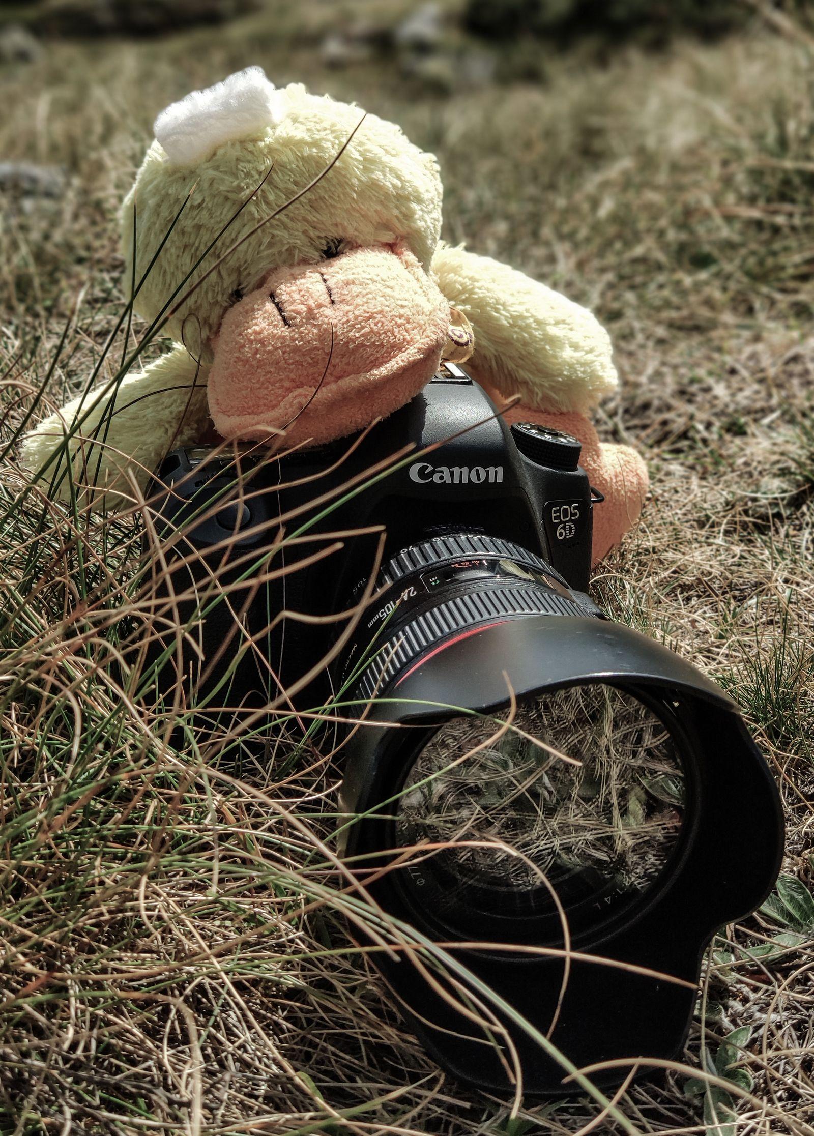 El intrépido reportero de naturaleza...