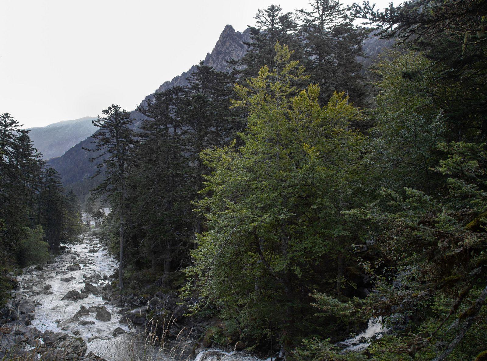 El río sigue su curso tras pararse para hacerse la foto